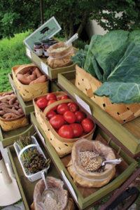 veggiecart